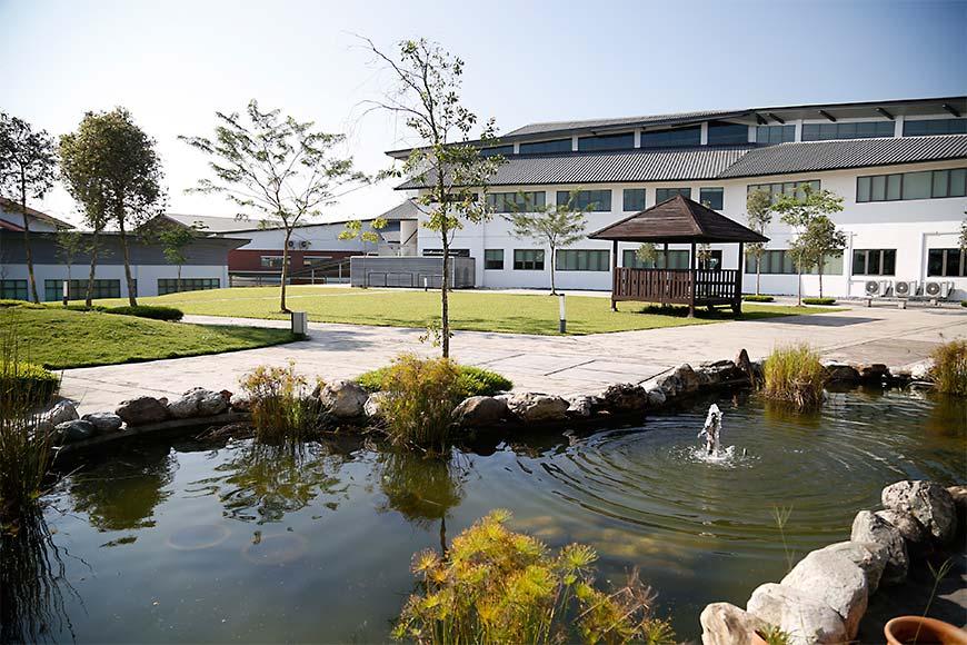 Medawar Science Garden